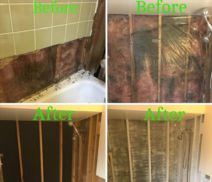 "Mold Remediation: ""Like it never even happened."""