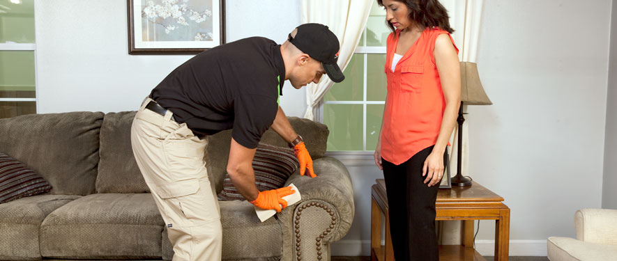 North Fort Wayne, IN carpet upholstery cleaning